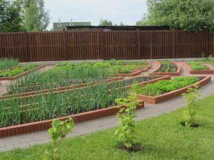 ЛК «Лонопарк» - Устройство декоративных огородов